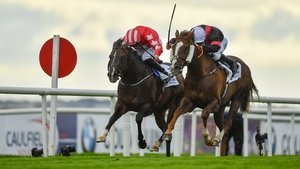 Njord (far side) was just touched off by Saltonstall in last season's Colm Quinn BMW Mile Handicap