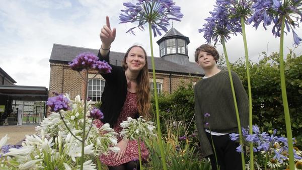 Historian-in-Residence for Children Dervilia Roche