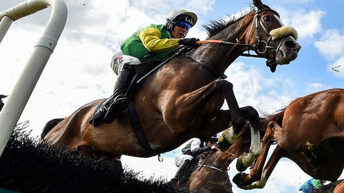 Tudor City won the Galway Hurdle in 2019