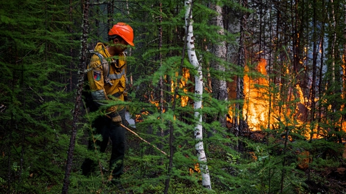 Wildfires have produced a record amount of carbon emissions Yakutia, Siberia