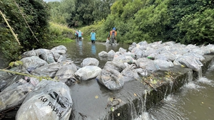 The Dodder Action Group says this is the largest single clean up that it has ever done.