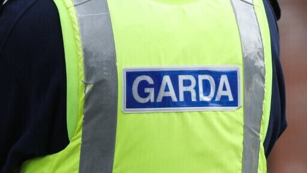 Garda Commissioner Drew Harris said they had identified a number of cases for examination (Stock image)