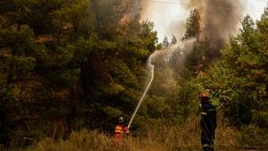 Firefighters tackle flames on Evia island