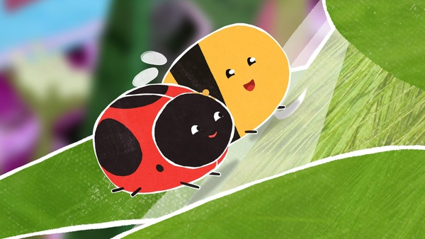 For bestie beasties, Ladybird & Bee, Wild Meadow is the whole world. Join them on their adventures and see what other creepy crawlies they meet as they buzz around.