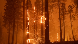 The Caldor fire covers more than 54,000 acres