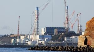 Fukushima nuclear plant went into meltdown following the huge 2011 tsunami