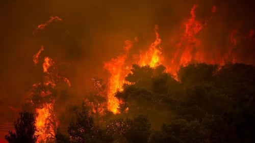 A wildfire burning last week in a forest on the outskirts of Athens