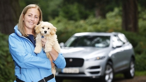 Carzone teamed up with dog behaviour expert Suzi Walsh to provide tips on how to travel safely with our four-legged passengers.