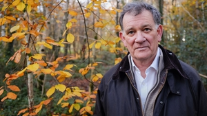 The writer and university teacher, Carlo Gebler in woodland. near his home in Fermanagh, Northern Ireland (Pic: David Barker)