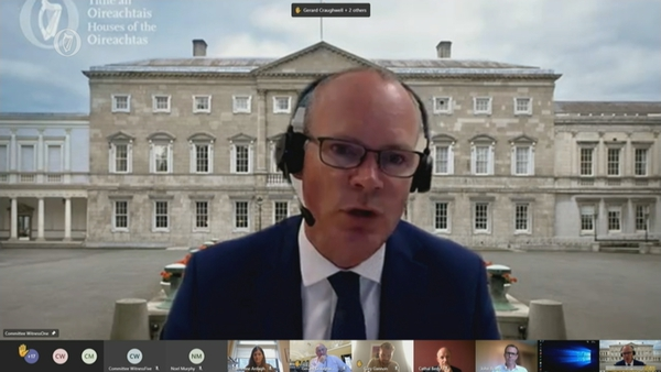 Documents show that Katherine Zappone thanked Simon Coveney for the opportunity on 4 March