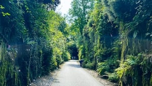 Patrick and Russell of The GastroGays share their top tips for a memorable trip on the Waterford Greenway.