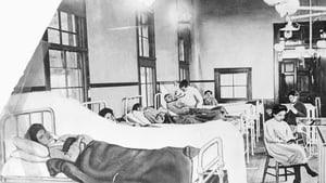 The story of Mary Mallon, an asympomatic super spreader of typhoid fever in the early 1900s in New York City.