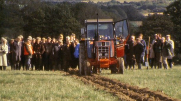 National Ploughing Championships (1981)