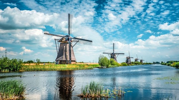 The Netherlands is still the tallest nation in the world (Stock image)