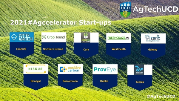 Participating start-ups are based in Cork, Donegal, Dublin, Galway, Limerick, Roscommon, Westmeath as well as Northern Ireland and Tunisia