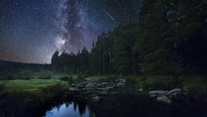 Naturefile - Night time