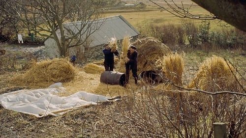 Two men working on the harvest in Co Donegal in 1968. Photo: Popperfoto via Getty Images