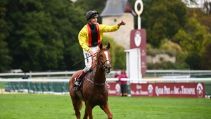 Torquator Tasso hails from a German family known for improving with age