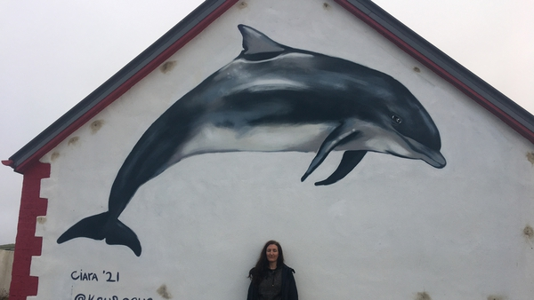 A mural featuring Fungie was unveiled on the gable of the lighthouse