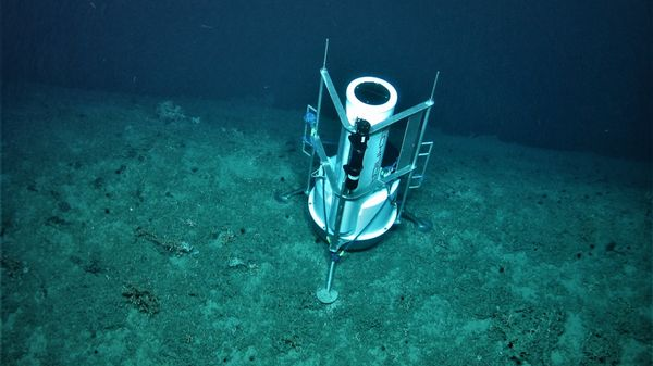 A lander monitoring station at the edge of the Porcupine Bank Canyon, 300km west of Dingle at 700m water depth. Photo: Aaron Lim UCC